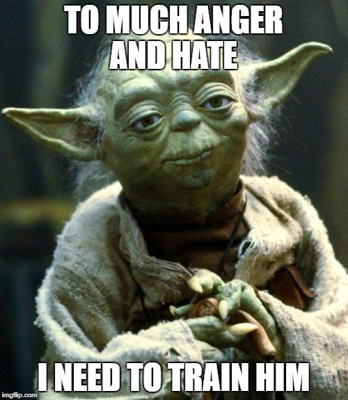 Star Wars Yoda Meme | TO MUCH ANGER AND HATE I NEED TO TRAIN HIM | image tagged in memes,star wars yoda | made w/ Imgflip meme maker