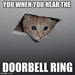 Ceiling Cat | YOU WHEN YOU HEAR THE DOORBELL RING | image tagged in memes,ceiling cat | made w/ Imgflip meme maker