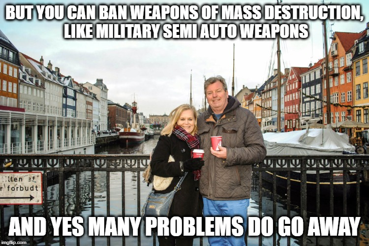 They have healthcare and college | BUT YOU CAN BAN WEAPONS OF MASS DESTRUCTION, LIKE MILITARY SEMI AUTO WEAPONS AND YES MANY PROBLEMS DO GO AWAY | image tagged in they have healthcare and college | made w/ Imgflip meme maker
