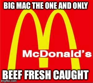 mcdonalds logo | BIG MAC THE ONE AND ONLY BEEF FRESH CAUGHT | image tagged in mcdonalds logo | made w/ Imgflip meme maker