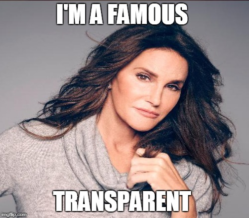 I'M A FAMOUS TRANSPARENT | made w/ Imgflip meme maker