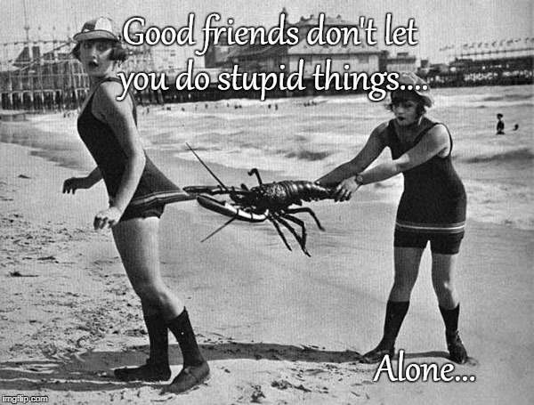 Good Friends... | Good friends don't let you do stupid things.... Alone... | image tagged in don't let you,stupid,alone | made w/ Imgflip meme maker