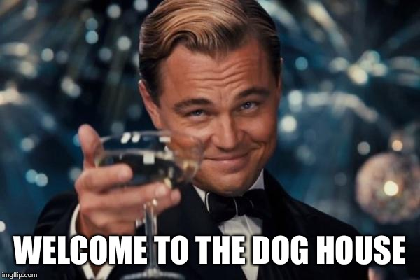 Leonardo Dicaprio Cheers Meme | WELCOME TO THE DOG HOUSE | image tagged in memes,leonardo dicaprio cheers | made w/ Imgflip meme maker