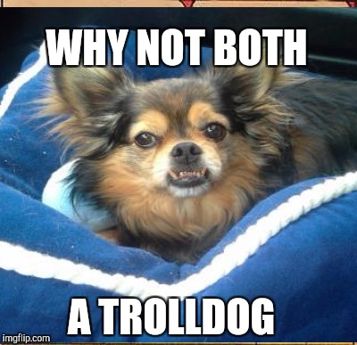 WHY NOT BOTH A TROLLDOG | made w/ Imgflip meme maker
