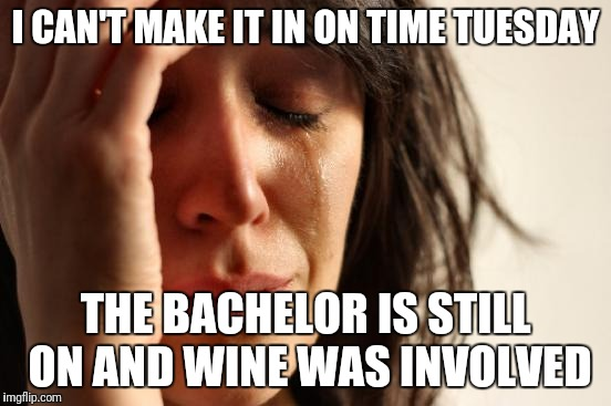 First World Problems Meme | I CAN'T MAKE IT IN ON TIME TUESDAY THE BACHELOR IS STILL ON AND WINE WAS INVOLVED | image tagged in memes,first world problems | made w/ Imgflip meme maker