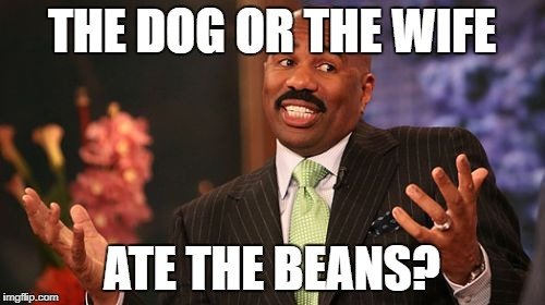 THE DOG OR THE WIFE ATE THE BEANS? | made w/ Imgflip meme maker