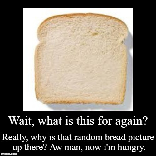 Wait, what is this for again? | Really, why is that random bread picture up there? Aw man, now i'm hungry. | image tagged in funny,demotivationals | made w/ Imgflip demotivational maker