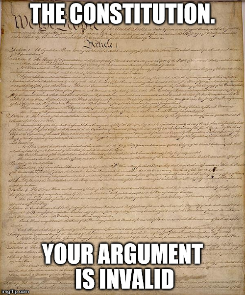 THE CONSTITUTION. YOUR ARGUMENT IS INVALID | image tagged in constitution | made w/ Imgflip meme maker