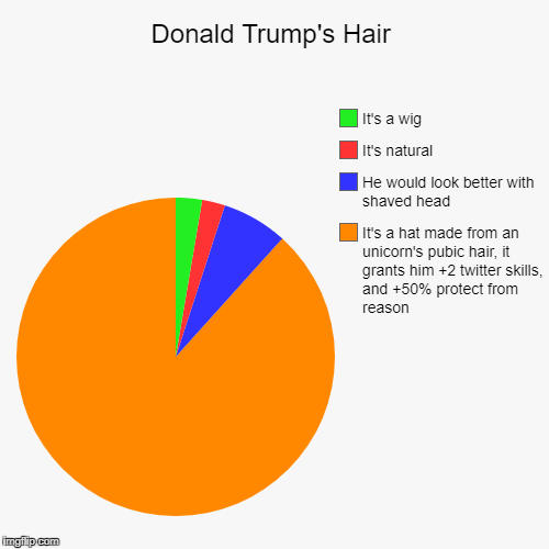 Donald Trump's Hair | It's a hat made from an unicorn's pubic hair, it grants him +2 twitter skills, and +50% protect from reason, He would  | image tagged in funny,pie charts,donald trump | made w/ Imgflip chart maker
