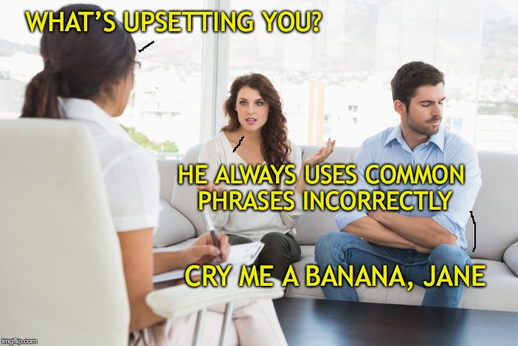 WHAT'S UPSETTING YOU? HE ALWAYS USES COMMON PHRASES INCORRECTLY CRY ME A BANANA, JANE | image tagged in marriage,counseling | made w/ Imgflip meme maker
