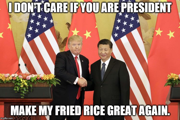Donald Trump Meme | I DON'T CARE IF YOU ARE PRESIDENT MAKE MY FRIED RICE GREAT AGAIN. | image tagged in trump,donald trump,make america great again,make america great,fried rice,politics | made w/ Imgflip meme maker