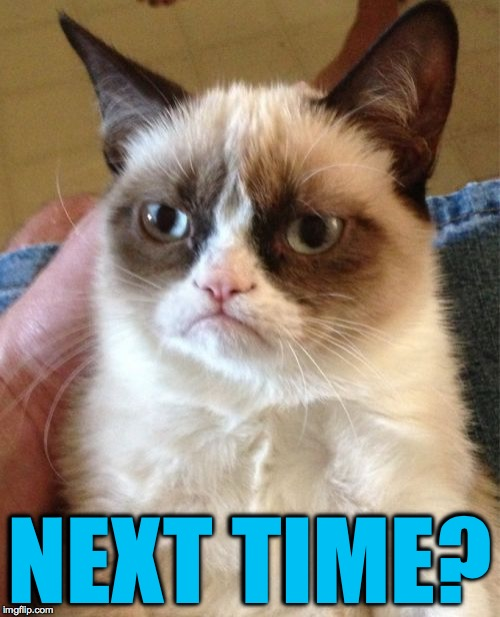 Grumpy Cat Meme | NEXT TIME? | image tagged in memes,grumpy cat | made w/ Imgflip meme maker