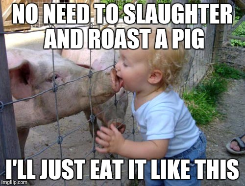 Too hungry | NO NEED TO SLAUGHTER AND ROAST A PIG I'LL JUST EAT IT LIKE THIS | image tagged in pig,pork,vegetarian,hungry,food,fast food | made w/ Imgflip meme maker
