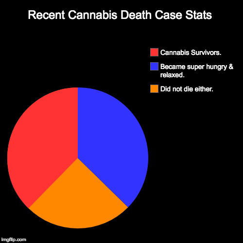 Recent Cannabis Death Case Stats | Did not die either., Became super hungry & relaxed., Cannabis Survivors. | image tagged in funny,pie charts | made w/ Imgflip pie chart maker