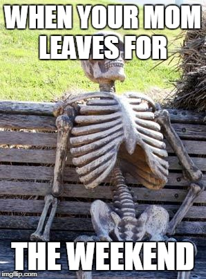 Waiting Skeleton Meme | WHEN YOUR MOM LEAVES FOR THE WEEKEND | image tagged in memes,waiting skeleton | made w/ Imgflip meme maker