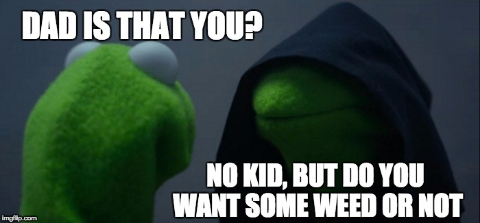 Evil Kermit Meme | DAD IS THAT YOU? NO KID, BUT DO YOU WANT SOME WEED OR NOT | image tagged in memes,evil kermit | made w/ Imgflip meme maker