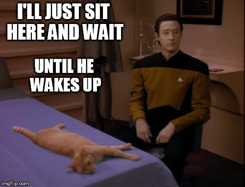 I'LL JUST SIT HERE AND WAIT UNTIL HE WAKES UP | made w/ Imgflip meme maker