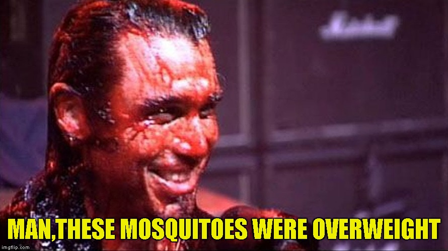 MAN,THESE MOSQUITOES WERE OVERWEIGHT | made w/ Imgflip meme maker