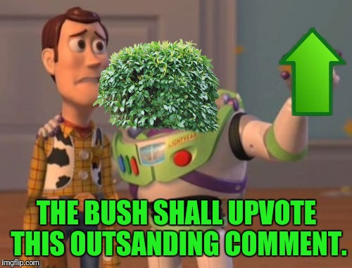 X, X Everywhere Meme | THE BUSH SHALL UPVOTE THIS OUTSANDING COMMENT. | image tagged in memes,x,x everywhere,x x everywhere | made w/ Imgflip meme maker