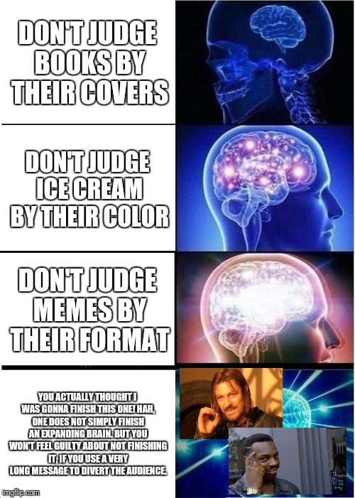 Expanding Brain Meme | DON'T JUDGE BOOKS BY THEIR COVERS DON'T JUDGE ICE CREAM BY THEIR COLOR DON'T JUDGE MEMES BY THEIR FORMAT YOU ACTUALLY THOUGHT I WAS GONNA FI | image tagged in memes,expanding brain | made w/ Imgflip meme maker