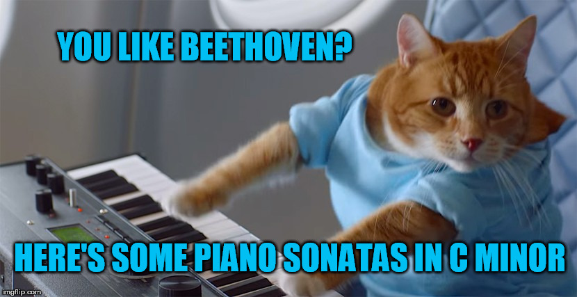 YOU LIKE BEETHOVEN? HERE'S SOME PIANO SONATAS IN C MINOR | made w/ Imgflip meme maker