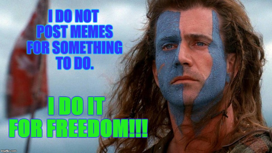 Braveheart | I DO NOT POST MEMES FOR SOMETHING TO DO. I DO IT FOR FREEDOM!!! | image tagged in memes,jokes,funny,humour,imgflip | made w/ Imgflip meme maker