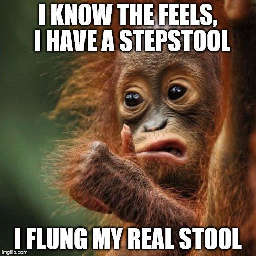 I KNOW THE FEELS,  I HAVE A STEPSTOOL I FLUNG MY REAL STOOL | made w/ Imgflip meme maker