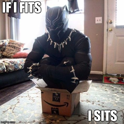 IF I FITS I SITS | image tagged in cat in a box | made w/ Imgflip meme maker