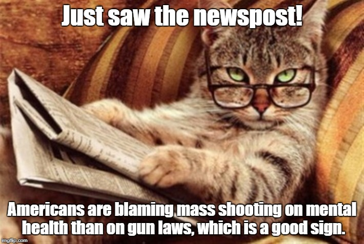 Cat reading news | Just saw the newspost! Americans are blaming mass shooting on mental health than on gun laws, which is a good sign. | image tagged in cat reading news | made w/ Imgflip meme maker