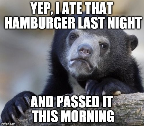 YEP, I ATE THAT HAMBURGER LAST NIGHT AND PASSED IT THIS MORNING | made w/ Imgflip meme maker