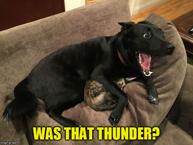 WAS THAT THUNDER? | made w/ Imgflip meme maker