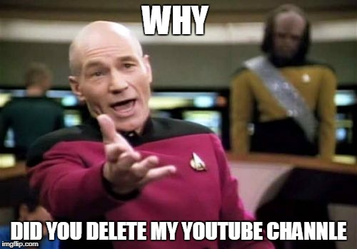 Picard Wtf Meme | WHY DID YOU DELETE MY YOUTUBE CHANNLE | image tagged in memes,picard wtf | made w/ Imgflip meme maker