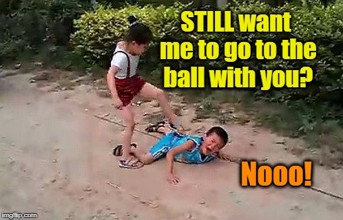 fight | STILL want me to go to the ball with you? Nooo! | image tagged in fight | made w/ Imgflip meme maker