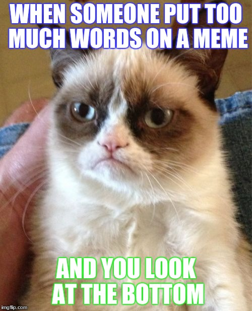Grumpy Cat Meme | WHEN SOMEONE PUT TOO MUCH WORDS ON A MEME AND YOU LOOK AT THE BOTTOM | image tagged in memes,grumpy cat | made w/ Imgflip meme maker