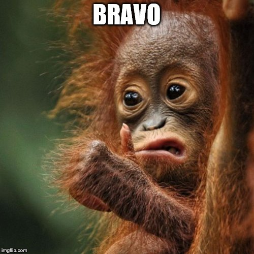 BRAVO | made w/ Imgflip meme maker