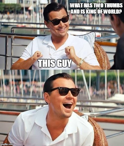 Leonardo Dicaprio Wolf Of Wall Street | WHAT HAS TWO THUMBS AND IS KING OF WORLD? THIS GUY | image tagged in memes,leonardo dicaprio wolf of wall street | made w/ Imgflip meme maker