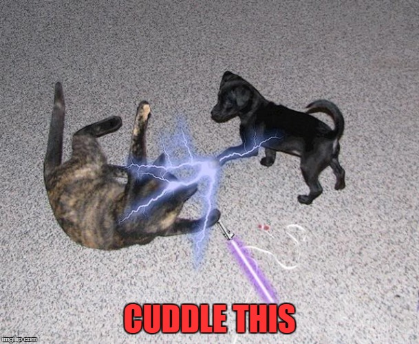 CUDDLE THIS | made w/ Imgflip meme maker