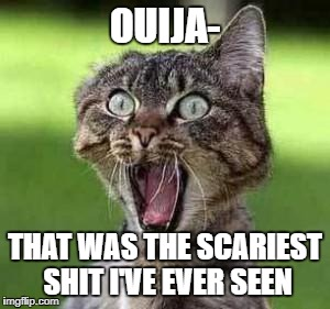 scared cat | OUIJA- THAT WAS THE SCARIEST SHIT I'VE EVER SEEN | image tagged in scared cat | made w/ Imgflip meme maker