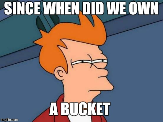 Futurama Fry Meme | SINCE WHEN DID WE OWN A BUCKET | image tagged in memes,futurama fry | made w/ Imgflip meme maker