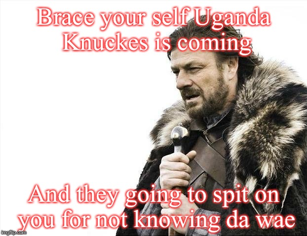 Do you know da wae? | Brace your self Uganda Knuckes is coming And they going to spit on you for not knowing da wae | image tagged in memes,brace yourselves x is coming,funny,uganda knuckles,da wae,do you know da wae | made w/ Imgflip meme maker