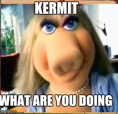 KERMIT WHAT ARE YOU DOING | made w/ Imgflip meme maker
