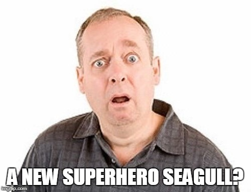 A NEW SUPERHERO SEAGULL? | made w/ Imgflip meme maker