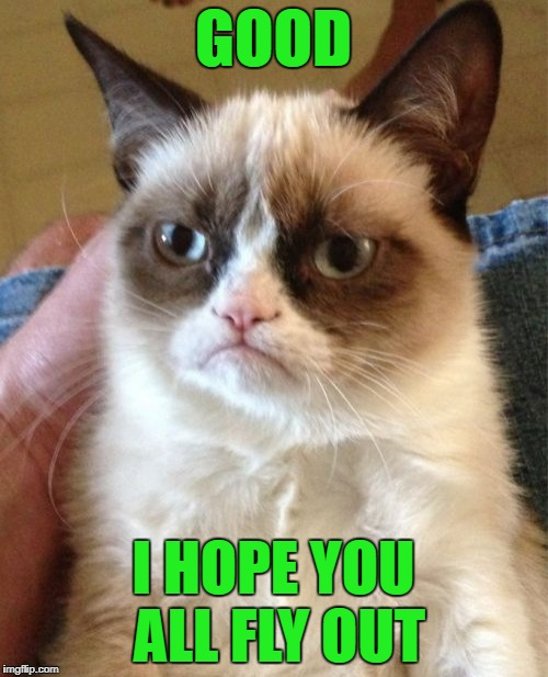 Grumpy Cat Meme | GOOD I HOPE YOU ALL FLY OUT | image tagged in memes,grumpy cat | made w/ Imgflip meme maker