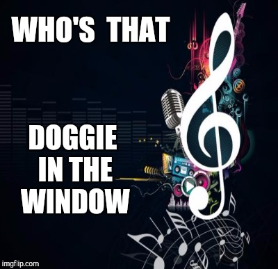WHO'S  THAT DOGGIE IN THE WINDOW | made w/ Imgflip meme maker