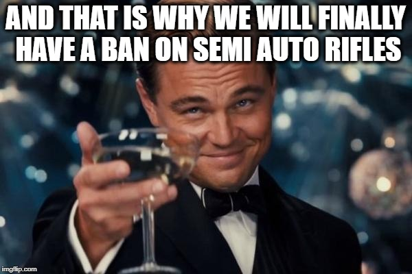Leonardo Dicaprio Cheers Meme | AND THAT IS WHY WE WILL FINALLY HAVE A BAN ON SEMI AUTO RIFLES | image tagged in memes,leonardo dicaprio cheers | made w/ Imgflip meme maker