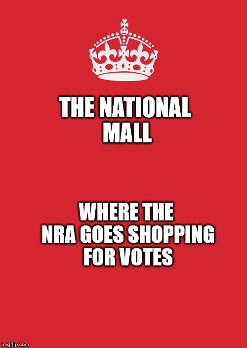 Keep Calm And Carry On Red Meme | THE NATIONAL MALL WHERE THE NRA GOES SHOPPING FOR VOTES | image tagged in memes,keep calm and carry on red | made w/ Imgflip meme maker