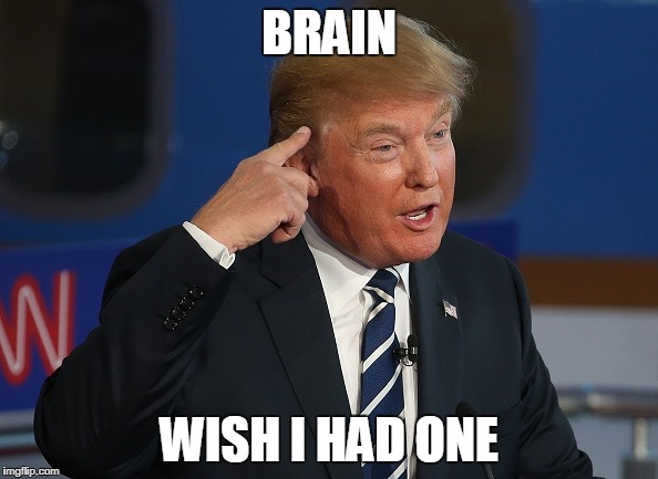 Donald Trump Pointing to His Head | BRAIN WISH I HAD ONE | image tagged in donald trump pointing to his head | made w/ Imgflip meme maker