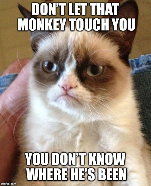 Grumpy Cat Meme | DON'T LET THAT MONKEY TOUCH YOU YOU DON'T KNOW WHERE HE'S BEEN | image tagged in memes,grumpy cat | made w/ Imgflip meme maker