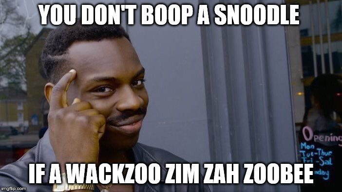 Roll Safe Think About It Meme | YOU DON'T BOOP A SNOODLE IF A WACKZOO ZIM ZAH ZOOBEE | image tagged in memes,roll safe think about it | made w/ Imgflip meme maker
