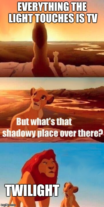 Simba Shadowy Place Meme | EVERYTHING THE LIGHT TOUCHES IS TV TWILIGHT | image tagged in memes,simba shadowy place | made w/ Imgflip meme maker